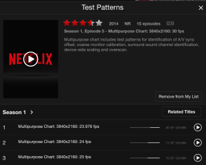 "Search for ""Test Patterns"" on Netflix, and you can watch special streams that will show you your resolution and data rate."