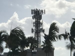 Cellular tower in Naples, Florida