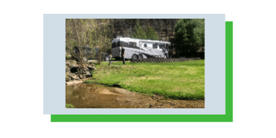 Photo of a man and a cat in green grass with a Class A RV behind them