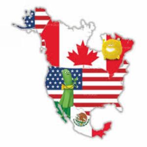 Cricket Canada and USA logo