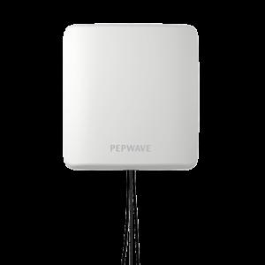 Pepwave IoT Antenna