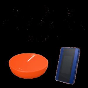 Multi Carrier Virtual SIM Plans